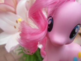Pinkie Pie by MidnightRarity
