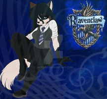 Ravenclaw House by Skyedawooo