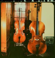Cellos by ACBusse