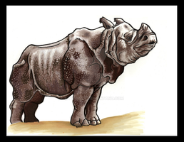 indian rhino by EatToast