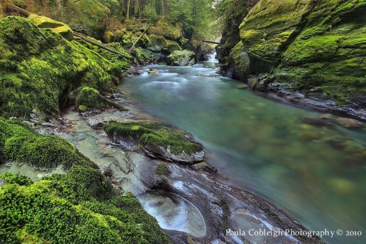 Boulder River by La-Vita-a-Bella