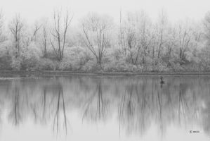 White fishing by s-ascic
