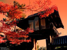 Japanese Building by xxsuperstarxx