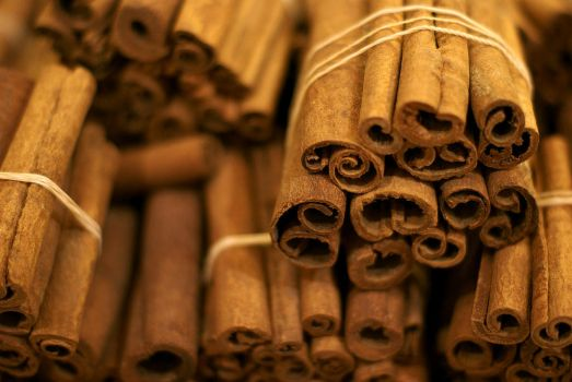 cinnamon by assica