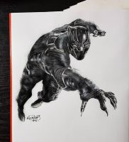 Ciwil War Black Panther by Agent-Junkie