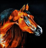 Painting- Arabian horse by Ennete