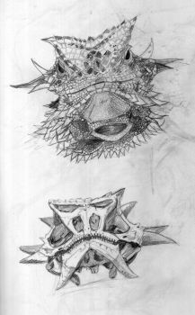 Horned Lizard and Skull  by thefaeriedragon
