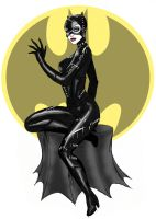 Catwoman Pinup Sketch by bredenius