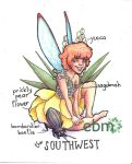 Fairies of the US- the Southwest by Deisi