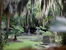 Beaufort Cemetary by nefari
