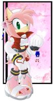 :: Amy Rose -Redesign Contest- by Chibi-Nuffie