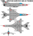 Mikoyan MiG-21 Fishbed by bagera3005
