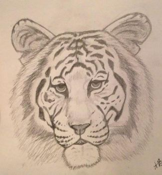 White Tiger by STARLAAA