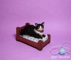 Ooak Handmade Miniature Tuxedo Cat and bed by AGZR-STUDIOS