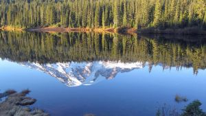 Another Reflection of Mt. Rainier Fall 2013 by videodude1961