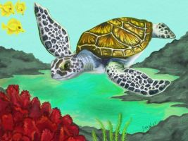 Little Sea Turtle by AprilMaybe