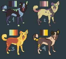 Border Collie Adoptables by Mustang-ADOPTS