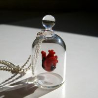 Heart in a Jar Necklace by KivaFord
