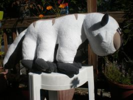 Baby Appa by cosmiccrittercrafts