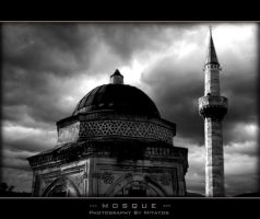 The Mosque by mitatos