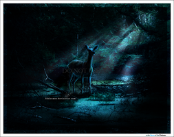 in the Silence of the Darkness by Esveeka