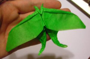 My Luna Moth by OrigamiMommy