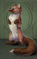Badinage the pine marten by Calypte