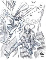 SPIDER-MAN and THE PROWLER by Wieringo