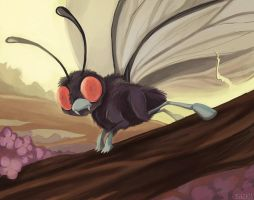 150+ project: butterfree by edface