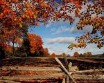 A fall Scene by BigHairPhotography
