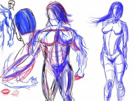 Human anatomy sketches by HB230