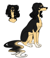 Saluki character 2 by jealousapples
