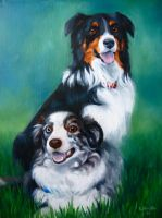 Renni and Spinner, Australian Shepherds by TernFeather