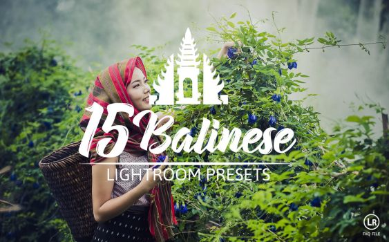 15 Balinese Pastel Premium Presets For Lightroom by hubafilter