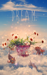 Dream by O3A