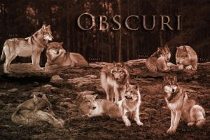 Obscuri by Wincey