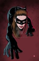 Catwoman Dark Knight Rises by mike-mcgee