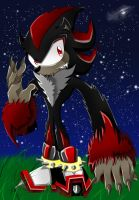 Shadow the Werehog by HERthatDRAWS