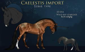 #014 Custom import by RoeSkull