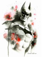 Batman - Arkham City by kleinmeli