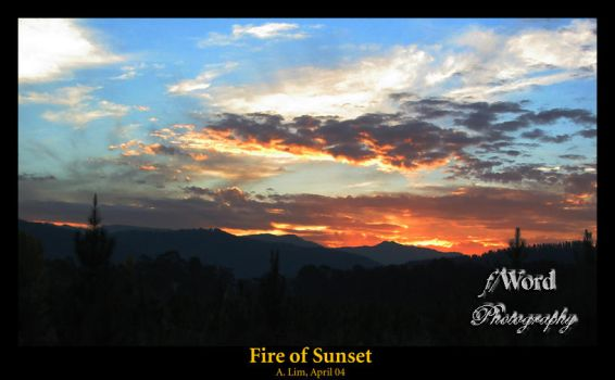 Fire of Sunset by infernal-moltres