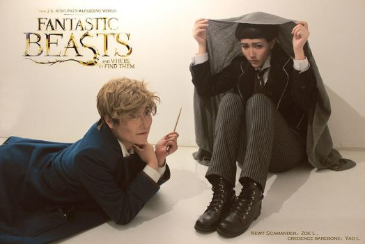 Fantastic Beasts and Where to Find Them by Zuoying
