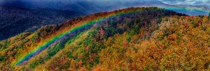 All The Colors of the Rainbow by M-Lewis