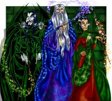 Severus, Albus, and Minerva by zorm