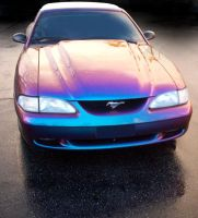 Rainbow Mustang by stlcrazy