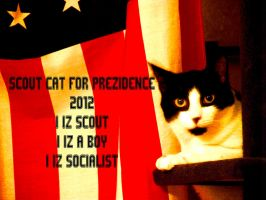 SCOUT CAT FOR PREZ by AlexAdrian2099