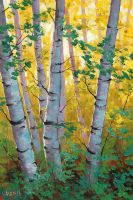 Aspen Light by artsaus
