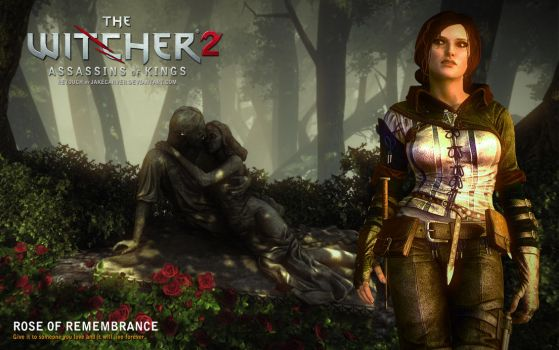 Witcher 2. Rose of Remembrance by JakeCarver