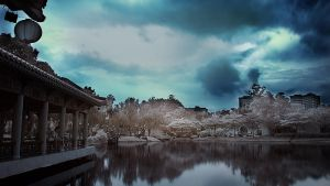 iNfraRed - Chinese Gardens 7 by shin-ex