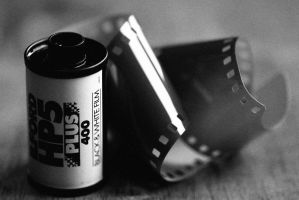 Ilford 400 by waggysue